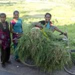 mujeres campo