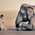 Historias para compartir…